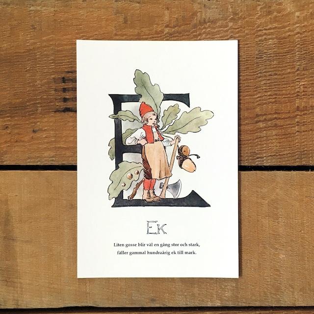 ポストカード「ヨーロッパナラ@EK(王子たちの花文字 - 5)」