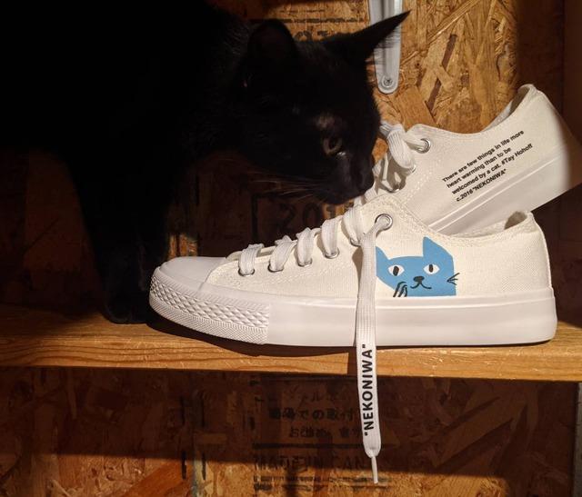 【限定カラー】猫庭スニーカー2021 北欧ブルー:ナチュラルホワイト【レディース】