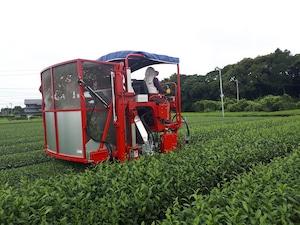 粉茶(200g)