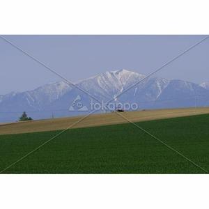 春の日高山脈