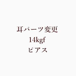耳パーツ変更 14kgf ピアス