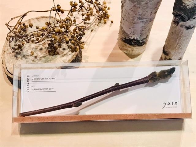 yasobox  植物見本 「モクレン」
