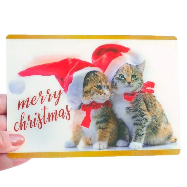 クリスマスカード ねこ帽子