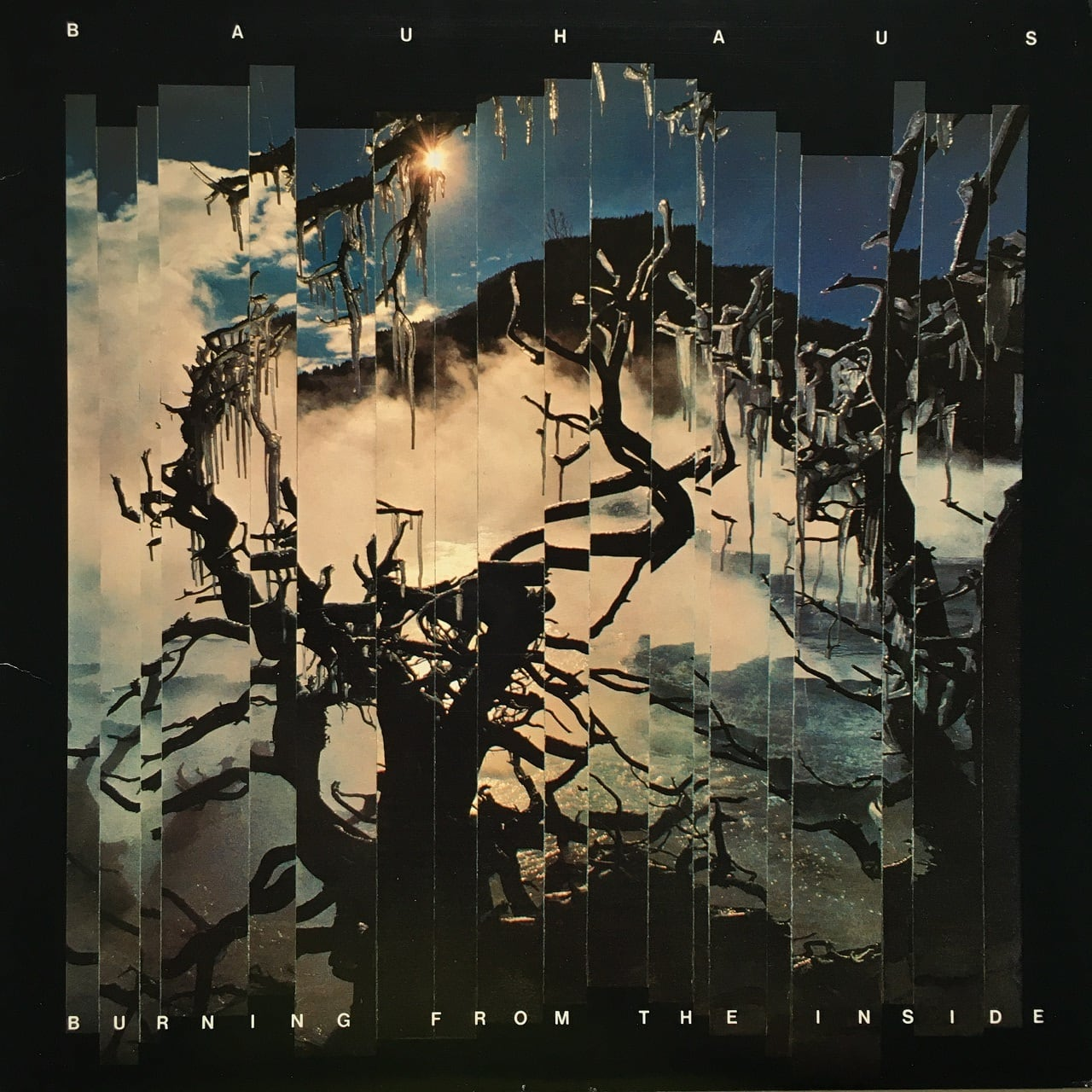 【LP・米盤】Bauhaus / Burning From The Inside