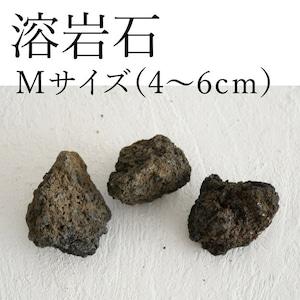 溶岩石 Mサイズ(4〜6cm)2〜3個入り【レイアウト用・着生用】