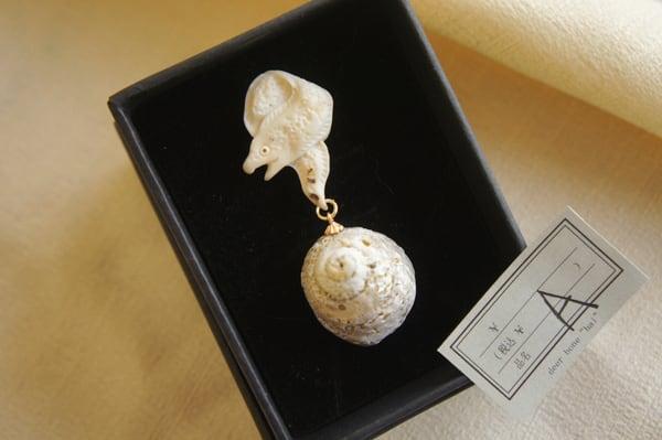 海の生物と貝殻「銀河」(ウツボ)