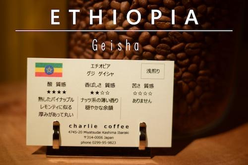 浅煎り/エチオピア グジ ゲイシャ 100g