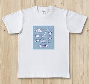 お魚Tシャツ サメ図鑑