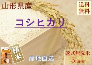 山形県産【コシヒカリ】精米 乾式無洗米 5Kg/袋【送料無料】