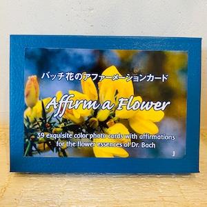 バッチアファメーションカード(日本語版)全39枚