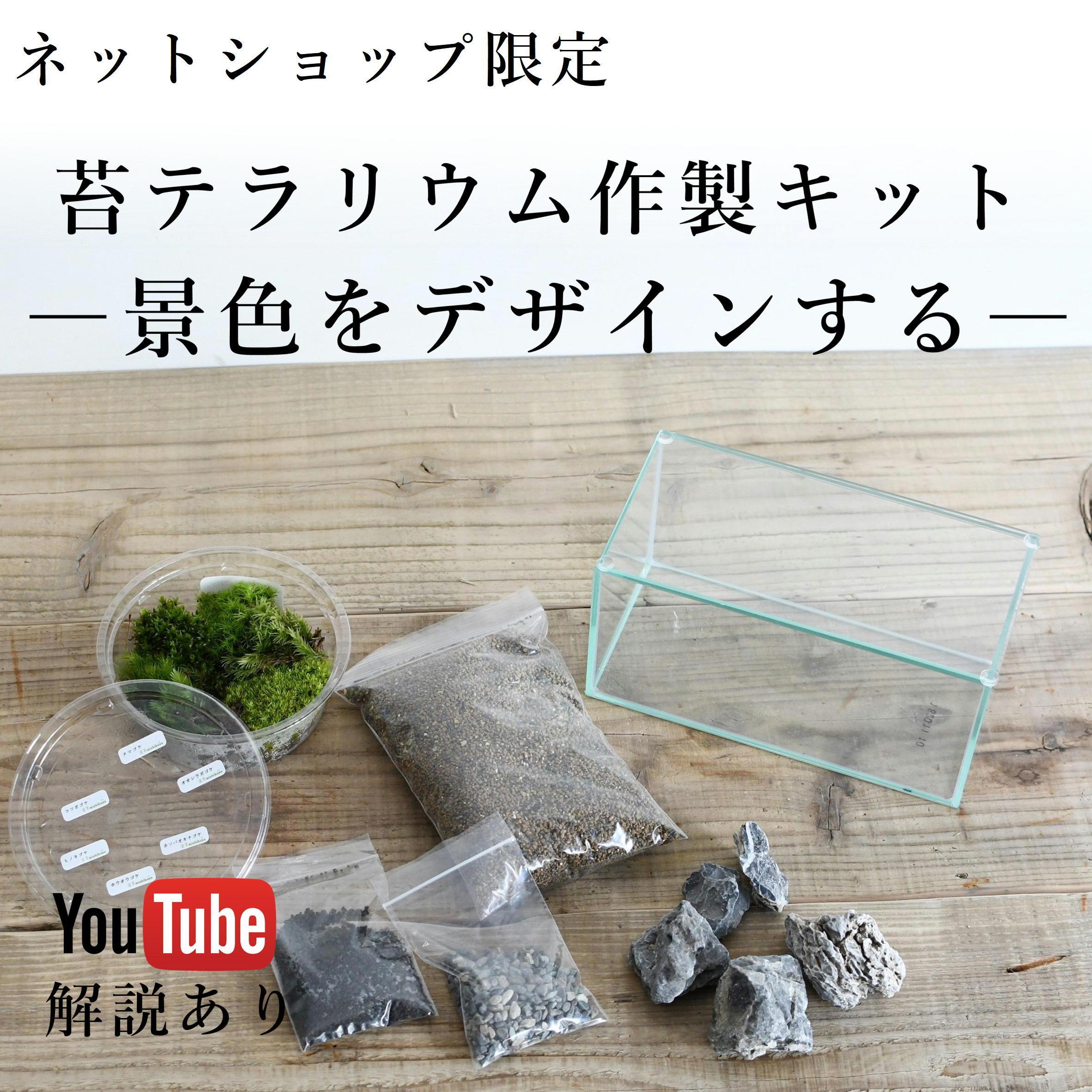 景色をデザインする ワイドなミニ水槽で作る苔テラリウム作製キット ◆選べる3タイプ/動画解説付き