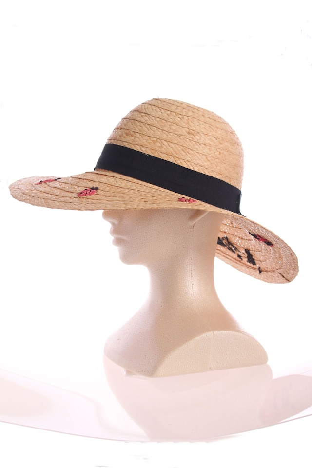 テントウムシの麦わら帽子