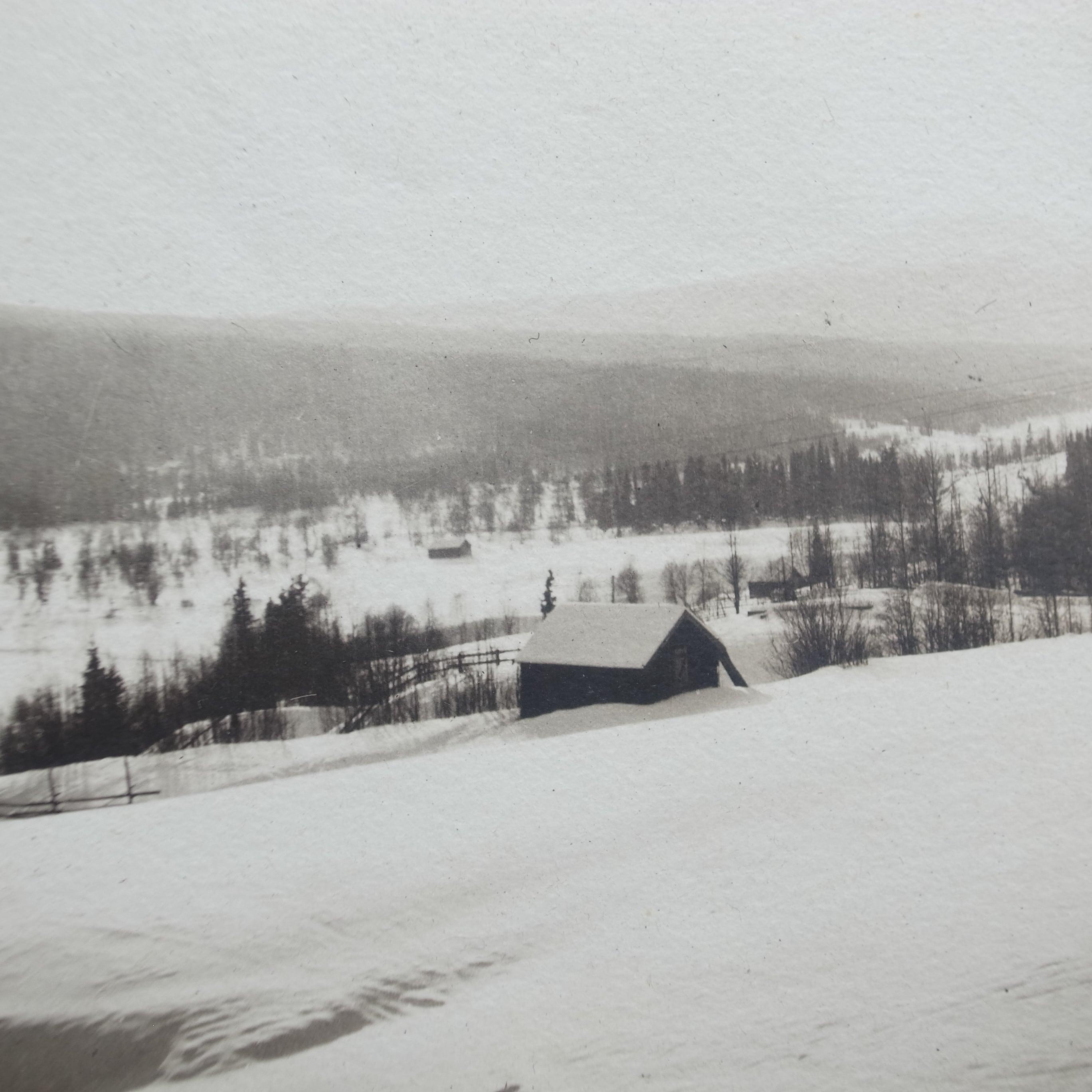 Old photo album / Memories of winter