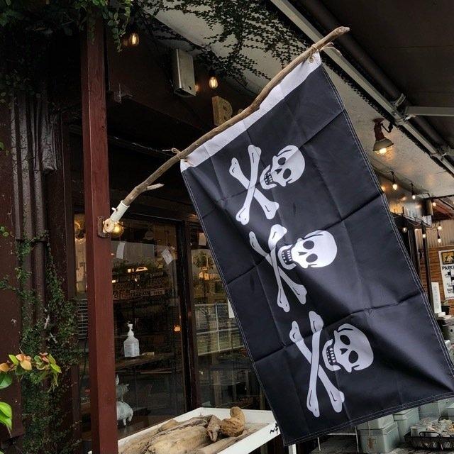 TOPANGA INTERIOR Pirates Flag C