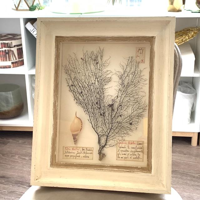 Sea fan (海洋植物標本)アート・アイボリーフレーム
