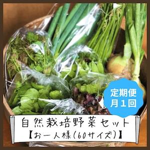 信州産 自然栽培『お一人様☆定期便』月1回 60サイズ(農薬、肥料不使用)