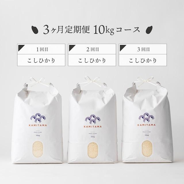 【定期便】令和3年度産 こしひかり10kg 毎月1回お届け(全3回) 送料無料
