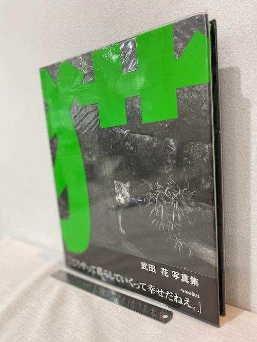 猫 TOKYO WILD CATS  武田花写真集