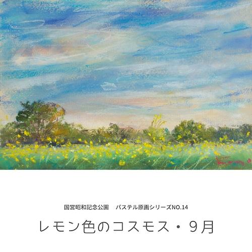 NO.14「レモン色のコスモス・9月」