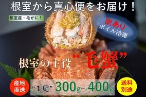 北海道根室産【堅蟹】活ボイル冷凍毛ガニ【総重量300g〜400g/尾】数量限定販売