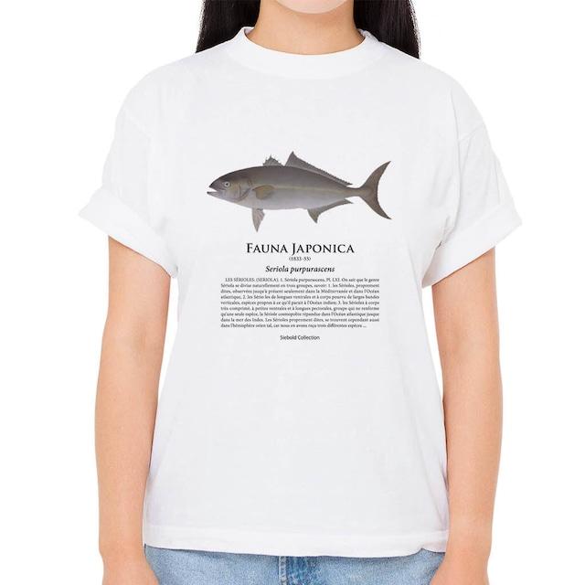【カンパチ】シーボルトコレクション魚譜Tシャツ(高解像・昇華プリント)