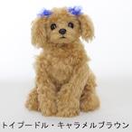 【手作りキット】トイプードル犬ブラウン(キャラメルブラウン)