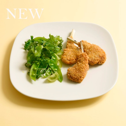 【2021新商品】サタルニア ダヌビオ プレート 28