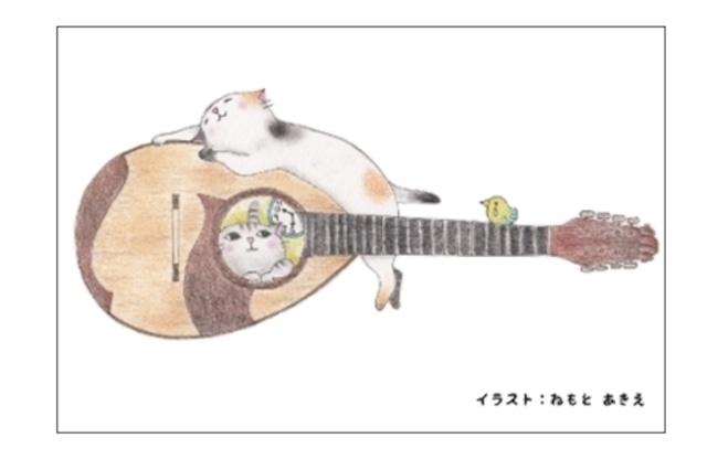 マンドリン猫のポストカード(4枚セット)