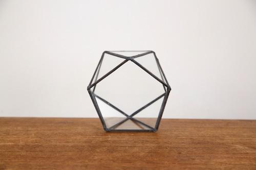 五角形 ガラス テラリウム2