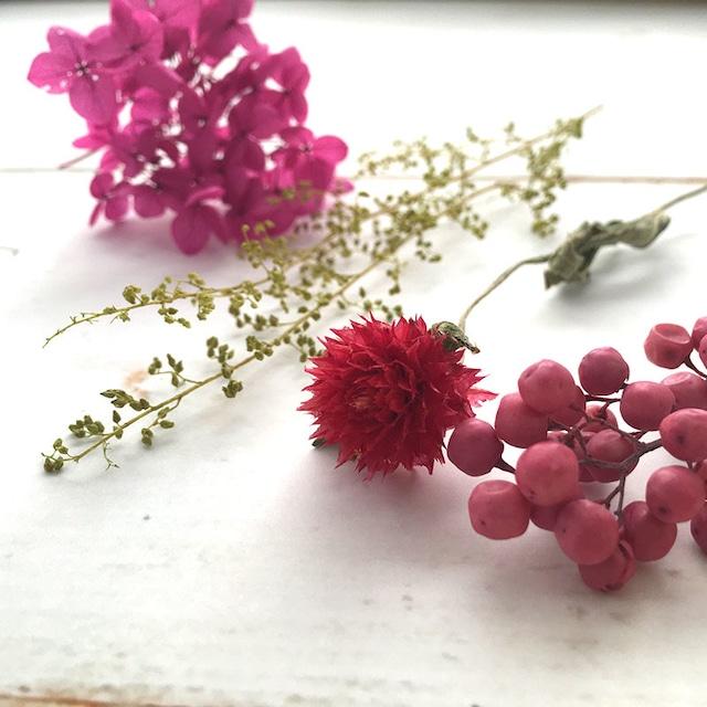 全5色|あじさいやのハーバリウム花材セット