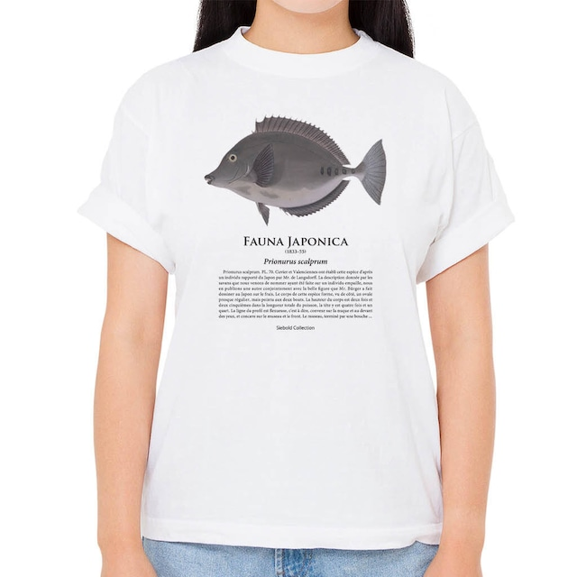 【ニザダイ】シーボルトコレクション魚譜Tシャツ(高解像・昇華プリント)