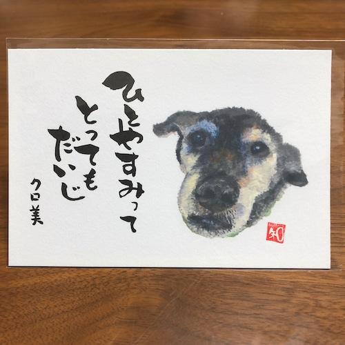 ポストカード 67(クロ美)