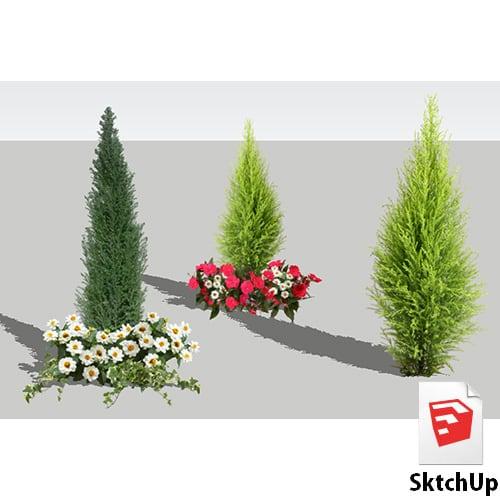 樹木SketchUp 4t_017 - 画像1