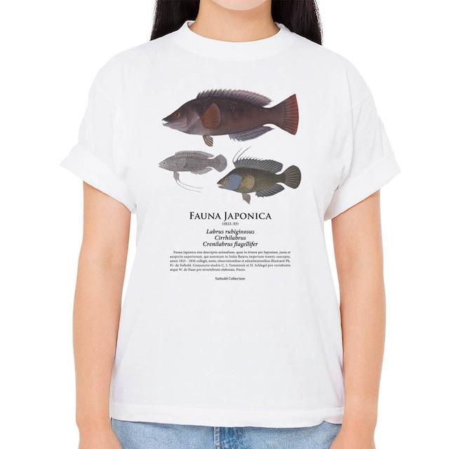 【ササノハベラ・オハグロベラ・イトヒキベラ】シーボルトコレクション魚譜Tシャツ(高解像・昇華プリント)