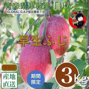 青森県津軽産りんご【早生ふじ】ご家庭用 3Kg/箱【送料無料】