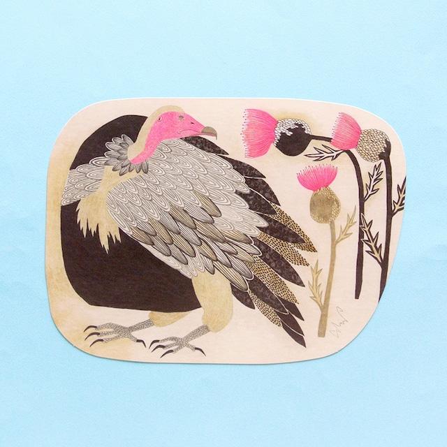 《鳥/ワシ》ポストカード 頭巾禿鷲 美しい色の鳥と美しい色の花 morita MiW 葉書 紙雑貨 ミニポスター
