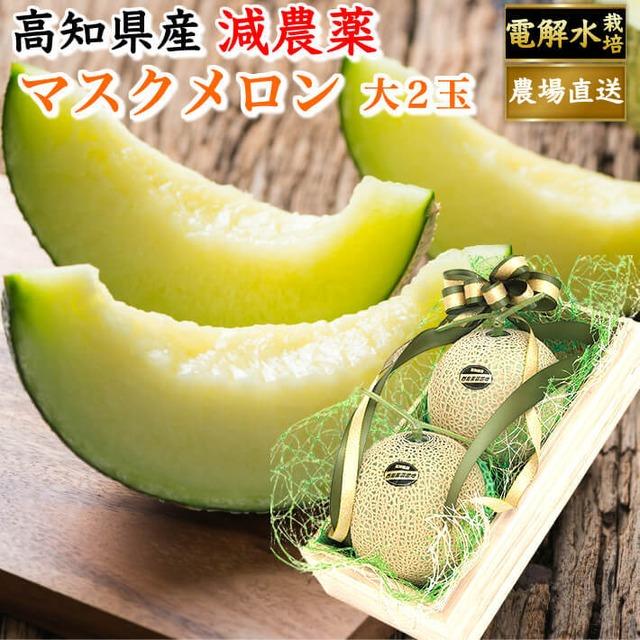 特選 桐箱入り マスクメロン 大玉(約1,5kg×2) お取り寄せ 贈答用 高級 ギフト フルーツ 果物 高知県産 送料無料