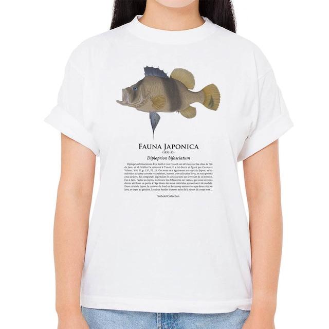 【キハッソク】シーボルトコレクション魚譜Tシャツ(高解像・昇華プリント)