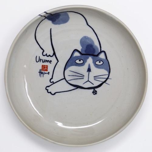 猫皿(やんちゃ猫大皿)うるめ