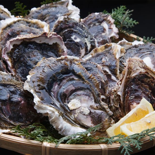 【地牡蠣】×【岩牡蠣】食べ比べセット 天草産 道の駅上天草さんぱーる (5月1日~7月末)