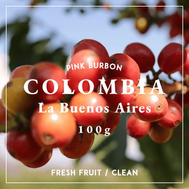 COLOMBIA|PINK BURBON|中煎り|コーヒー豆