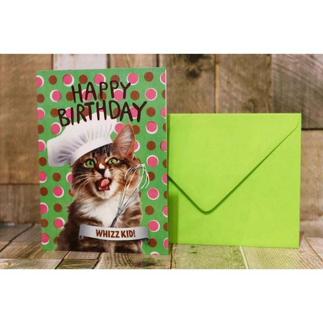 happy birthday/グリーティングカード/ネコ01(お誕生日おめでとう)/浜松雑貨屋 C0pernicus