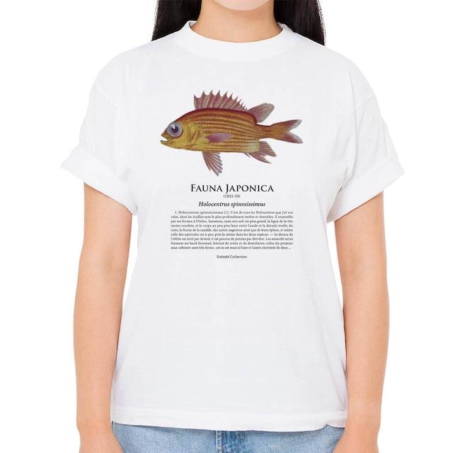 【イットウダイ】シーボルトコレクション魚譜Tシャツ(高解像・昇華プリント)