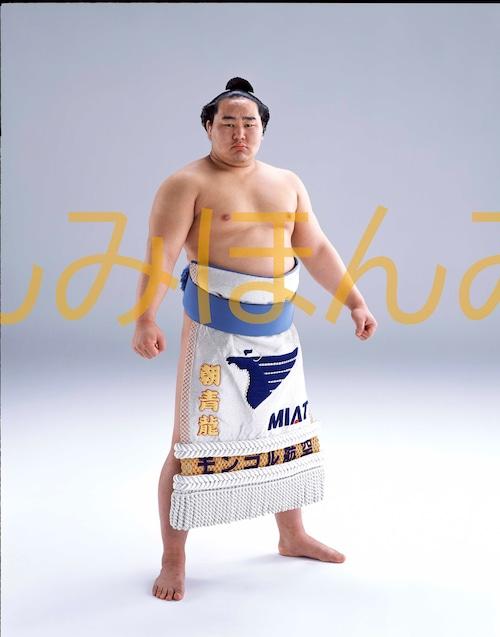 平成15年1月場所優勝 大関 朝青龍明徳関(2回目の優勝)