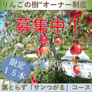 「りんごの樹」オーナー制度募集中!【葉とらずサンつがるコース】【青森県】