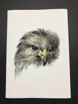 Head of bird prey by Jean Bernard レプリカ