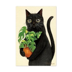 23.黒猫同居人 ポストカード / Housemate Postcard