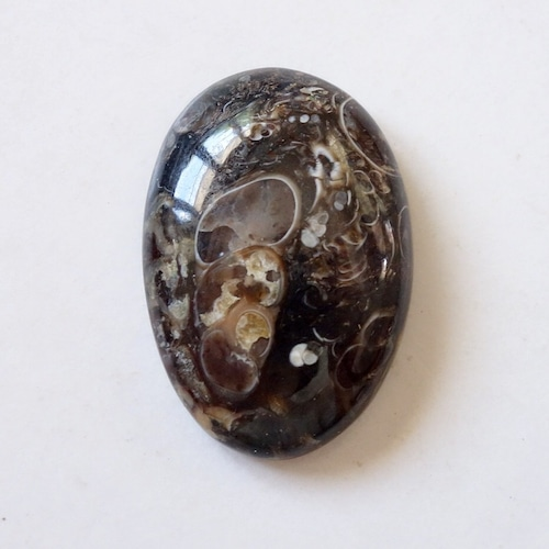 ツリテラアゲート 天然石ルース