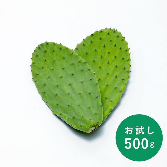 食べるサボテン 太陽の葉 フレッシュリーフ(新芽限定・お試し500g・ゆうパケット発送)