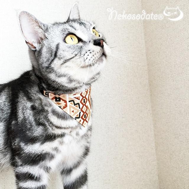 【ブラウントライバル柄】猫用バンダナ風首輪/選べるアジャスター 猫首輪 安全首輪 子猫から成猫